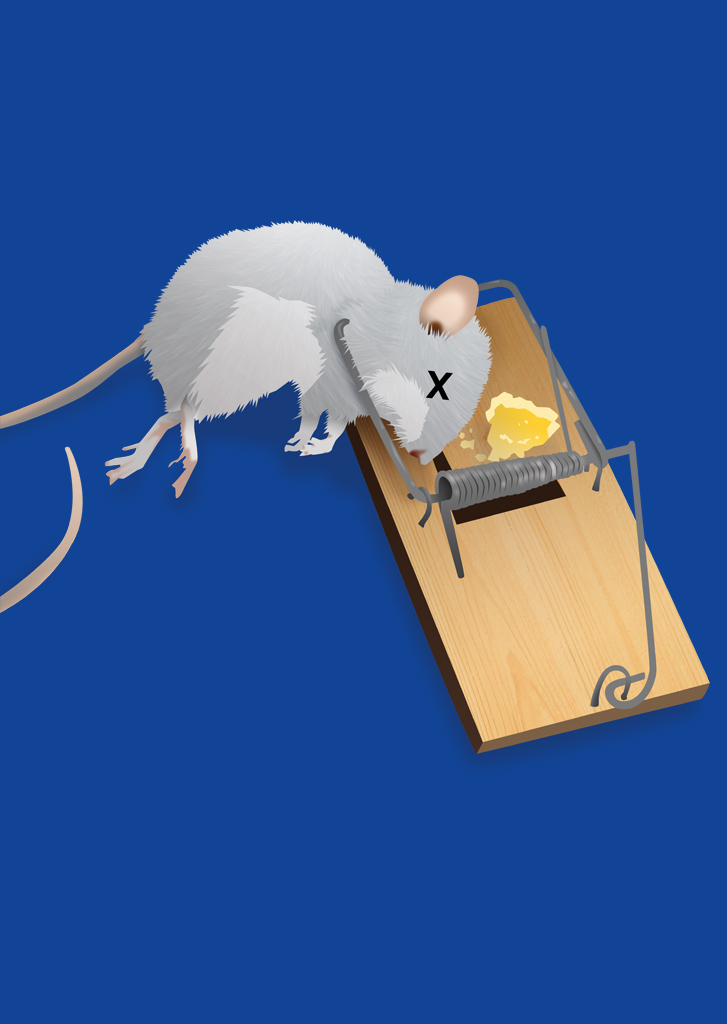Die Mausefalle (The Mouse Trap)
